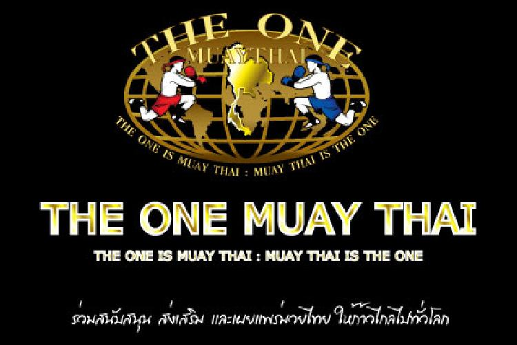 the one is muay thai